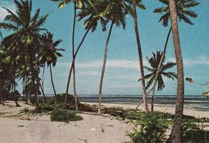 Nyali Beach - kongwa2london.com